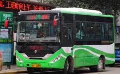 三明绿道公交二号线公交车路线