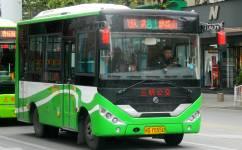 三明81路公交车路线