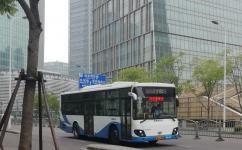 上海981路公交车路线