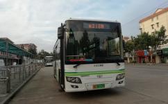 上海316路公交车路线