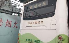 上海横长定班线公交车路线