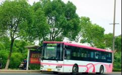 上海莲卫专线公交车路线