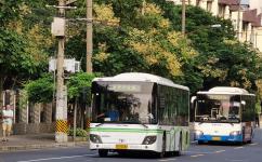 上海申川专线公交车路线