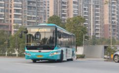 上海嘉定14路公交车路线