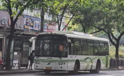 上海165路公交车路线