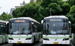 上海146路公交车路线