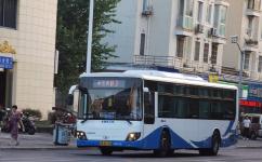 上海83路公交车路线