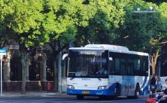 上海795路公交车路线