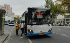 上海浦东43路公交车路线