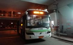 上海陆安线(高速)公交车路线