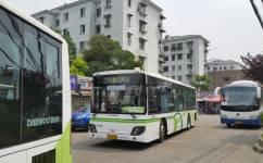 上海856路公交车路线