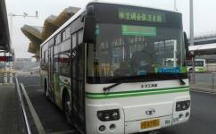 上海金张卫支线公交车路线