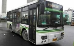 上海奉贤11路公交车路线