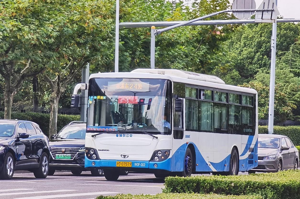 上海浦东24路公交车路线