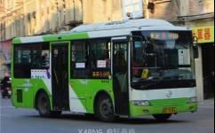 汕头5路公交车路线