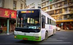 汕头101路公交车路线