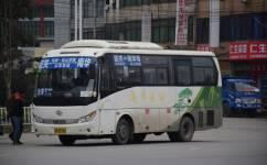 韶关南华寺专线公交车路线