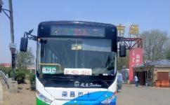沈阳335路支线公交车路线