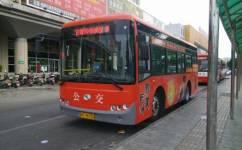 石狮C02路公交车路线