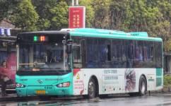 苏州81路公交车路线