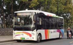 苏州31路公交车路线