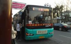 苏州游1路南线公交车路线