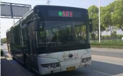 苏州503路公交车路线