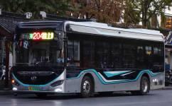 苏州204路夜线公交车路线