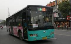 苏州502路大站车公交车路线