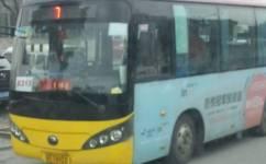 苏州743路(原吴江213路)公交车路线
