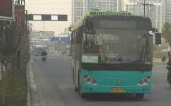 苏州高峰5号公交车路线