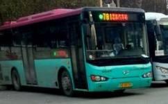 苏州781路(原吴江281路)公交车路线