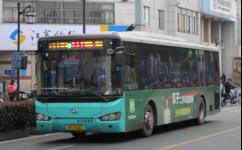 苏州202路公交车路线