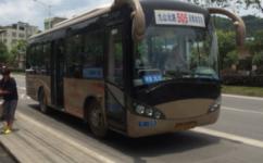 温州65路(原505路)公交车路线