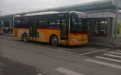 温州30路公交车路线