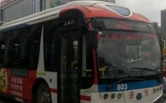 武汉803路公交车路线
