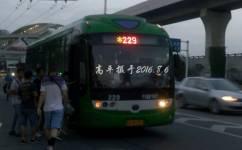 武汉229路公交车路线