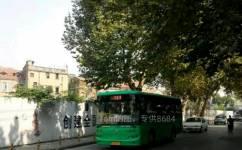 武汉313路公交车路线