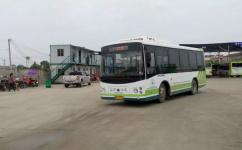 武汉新洲216路(内环)公交车路线