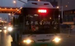 武汉559路公交车路线