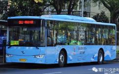 厦门31路公交车路线