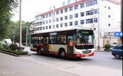 西宁37路公交车路线