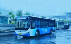西宁20路公交车路线