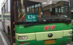 新乡36路/K36路公交车路线