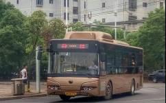 新余新余-分宜公交车路线