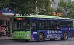 新余302路公交车路线