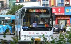 新余503路公交车路线