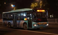 新余304路公交车路线