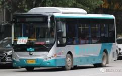 阳春1路公交车路线