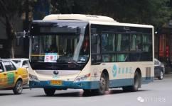 阳春三甲线公交车路线